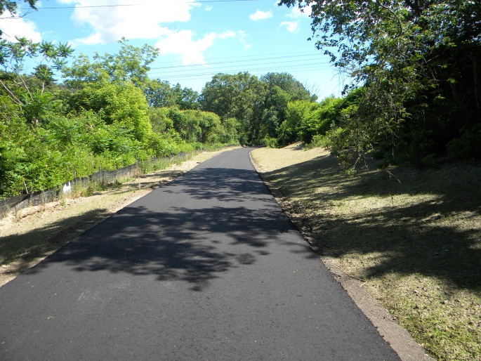 Cochituate Rail Trail- Paved Road