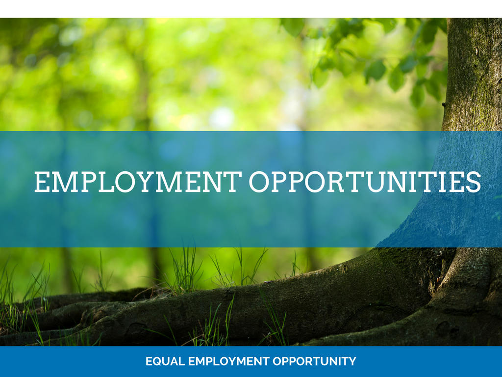 image of employment opportunities page