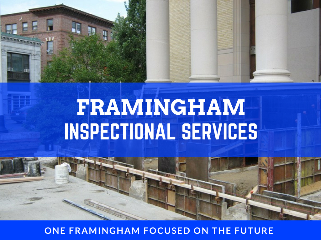 image of inspectional services banner