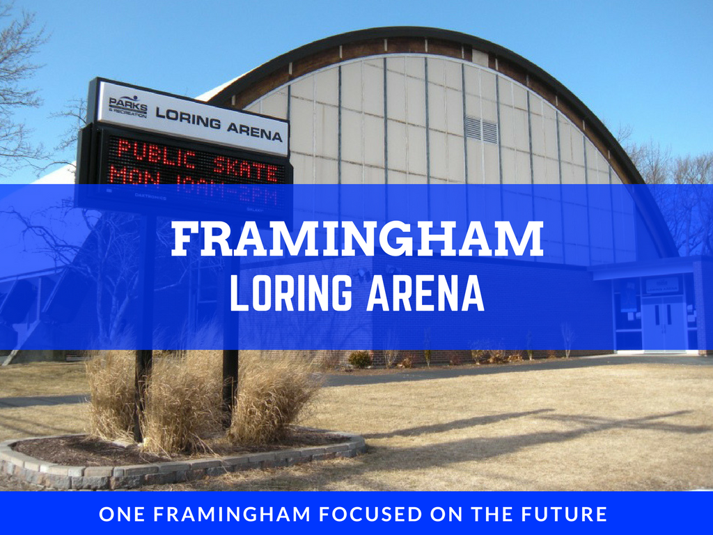 image of loring arena banner