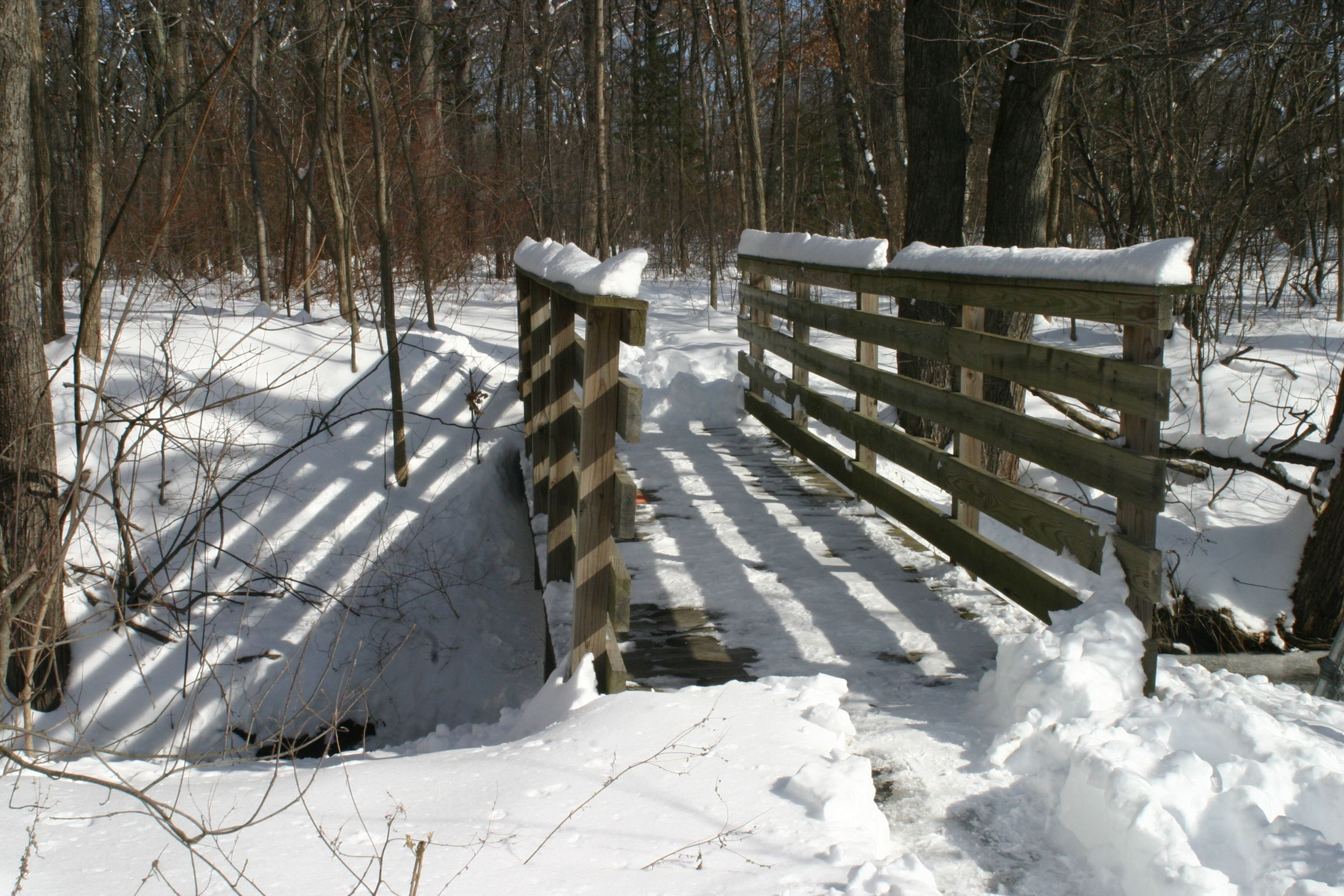 Snowy Bridge Arthur-Morency Woods