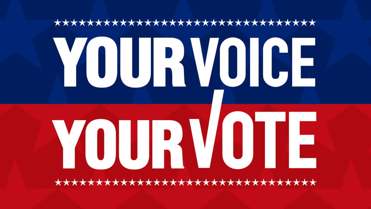 Image showing the banner your voice your vote
