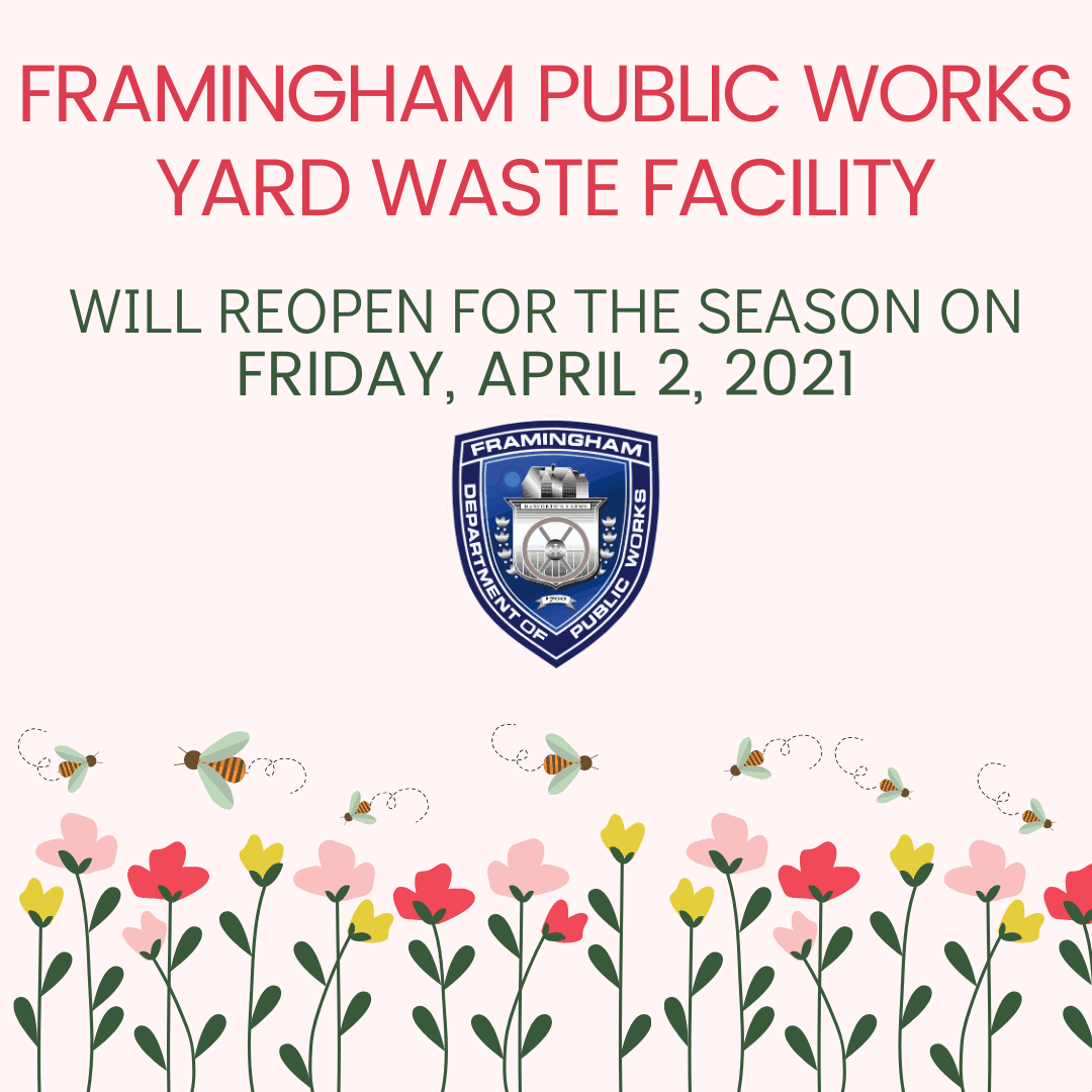 Image of flowers and bees. Text: Framingham DPW will reopen the Yard Waste Facility, Fri. April 2