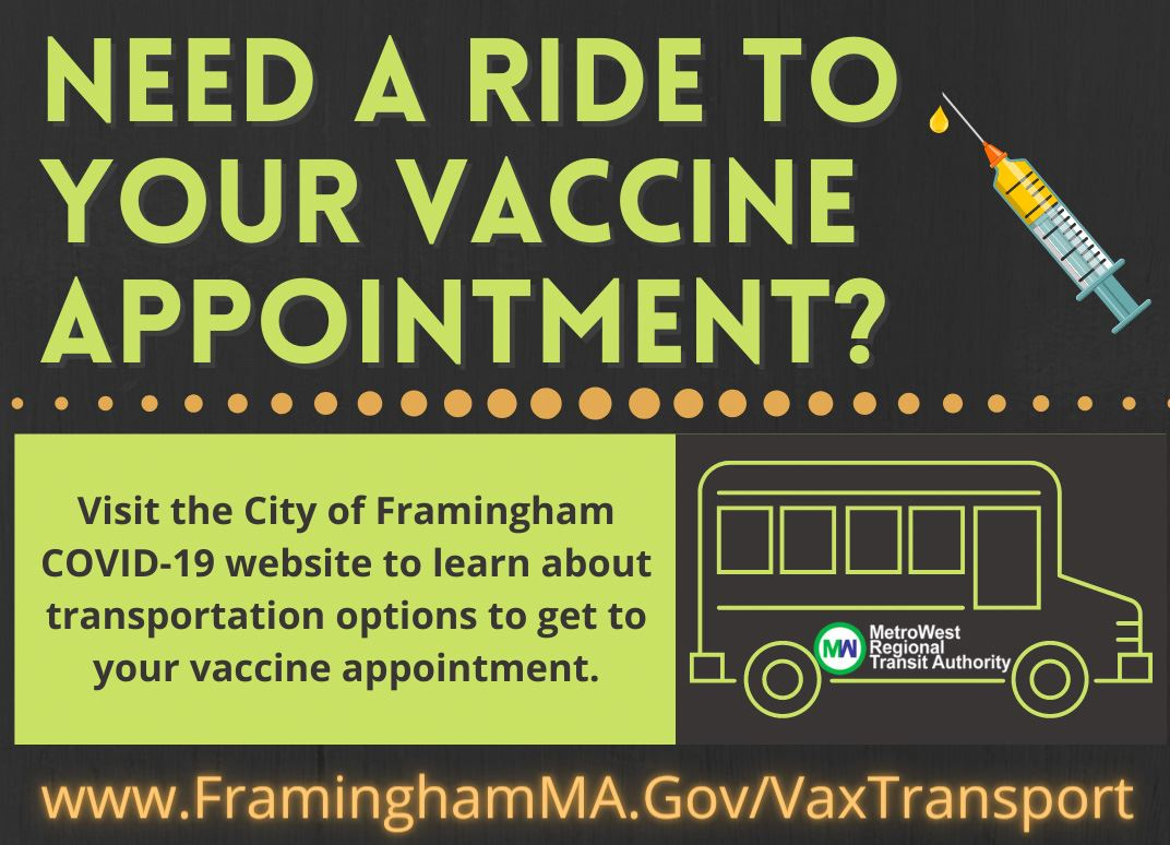 Vax Transport Graphic